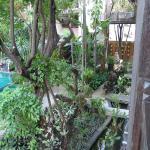 Yantarasiri Resort Photo