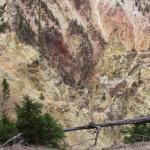 Foto de Yellowstone River