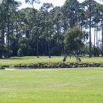 New Smyrna Beach Golf Club near the hotel