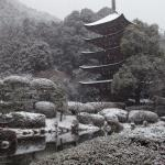 Foto de Ruriko Temple Five-Story Pagoda