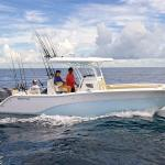 Fishing Charters available offshore near the motel