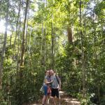 Thomas' Retreat Bukit Lawang Foto