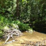 Foto de Wilderness Eco Safaris - Tours