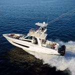 Offshore fishing charter available near the motel