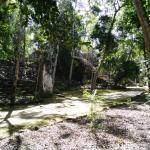 Photo de Paraiso Tours