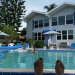Dolphin Inn Foto