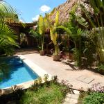 Pool garden and breakfast palapa