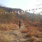 Photo de Sanjay Gandhi National Park