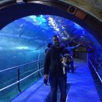 Aquarium Donostia-San Sebastian