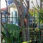 Giardino ombreggiato