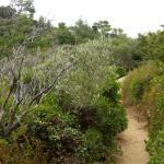 Photo de Parc national de Port-Cros