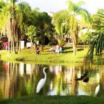 Parque Natural Municipal da Água Vermelha João Câncio Pereira Photo