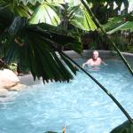 Foto de Palm Cove Tropic Apartments