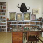 Hemingway-Museum Finca La Vigía Foto