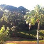 Hotel Mango Valley Foto