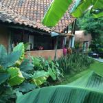 Photo de Villa Casa Luna