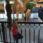 Bukit Gambang Resort City Foto