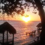 Photo de Coop Marena Beach Resort