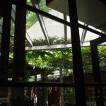 Shinshindo Kyoto University Foto