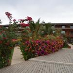 Photo de Royal Decameron Baobab