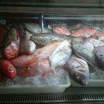 Hoy en Delicias Del Mar 🌊