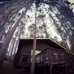 Blue Spruce Resort Foto