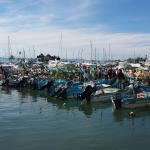 La Cruz de Huanacaxle Fish Market Foto