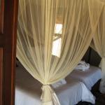 Hoodia Desert Lodge Foto