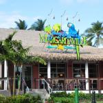 Entrance - Margaritaville Restaurant Photo