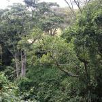Oloolua Nature Trail
