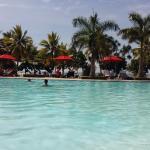 Photo de Club Palm Garden
