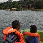 The sanctuary. View from the boat as we arrived at Ngamba Island