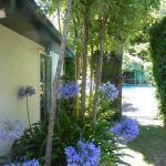 Riverbank Cottages Foto