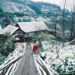 Sapa in snow season - Jan 2016. No need to go Europe to see snow