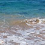 Laniakea Beach Foto