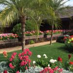 Foto di Doi Tung - The Royal Villa