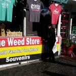 The Weed Store Image