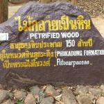 Foto de Phu Faek Forest Park