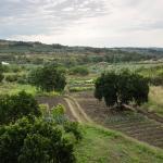 Foto de Casa Rural Hosteria Cantarranas