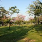 Zhuhai Seaside Park Photo