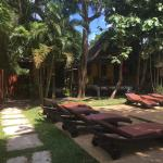 Photo de New Leaf Detox Resort