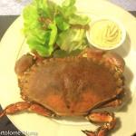 Photo de Hotel Restaurant de la Mer