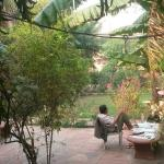 Photo de Jungle Lodge