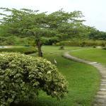 Photo de Hibiscus Garden Hotel