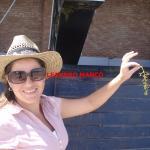 Andeluna Cellars Foto