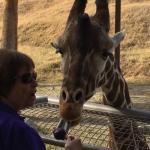 Photo de Living Desert Zoo & Gardens