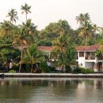 Zdjęcie Purity at Lake Vembanad