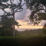 Oxygen Jungle Villas Foto