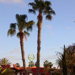Foto de Dunas Maspalomas Resort