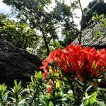Photo de Thongtapan Resort